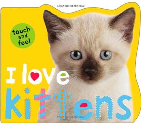 My Own Kitten Touch And Feel Board Book Buku Impor Anak i kittens touch and feel roger priddy shopswell