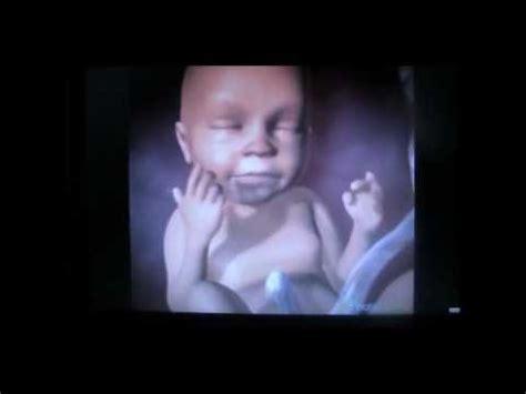 wann beginnt der 6 schwangerschaftsmonat woche 21 bis 27 der schwangerschaft 6 monat und 7 monat