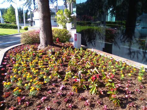 idee aiuole giardino idee aiuole giardino affordable idee per il giardino with