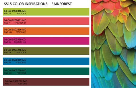 color trends on trend council color inspiration and summer 2015