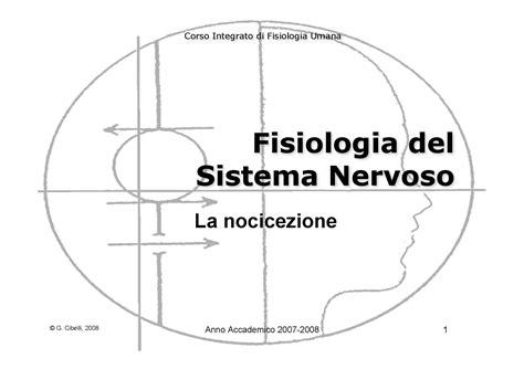 dispense fisiologia umana fisiologia umana ii nocicezione dispense