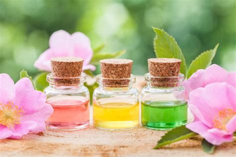 essential oils to calm dogs how to use essential oils to calm your s anxiety dogtime