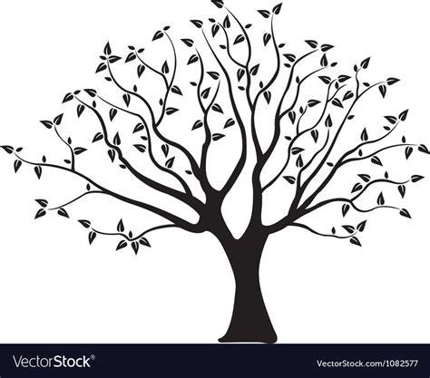 Tree Royalty Free Vector Image Vectorstock Ancestry Tree Stock Images Royalty Free Images Vectors
