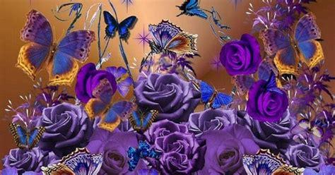 wallpaper bunga mawar ungu gambar bunga mawar ungu download gambar gratis