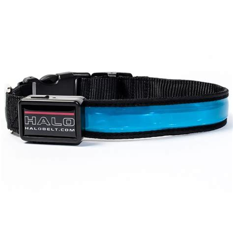 led collar halo mini led safety collar blue large healthypets
