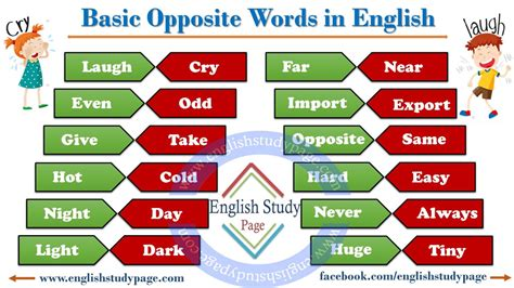Brief Opposite Word Basic Opposite Words In Study Page