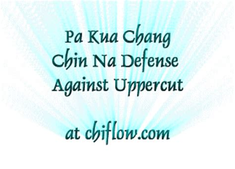 pa kua chang for self defense books bagua overview