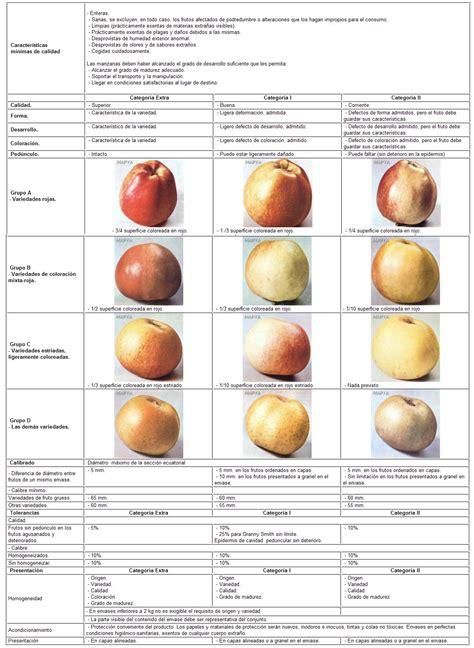 Resumen 5 Pepitas De Naranja by Normas De Calidad En Fruta De Pepita