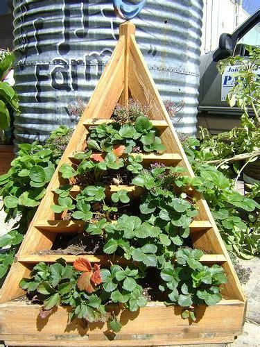build  strawberry planter tips  plans