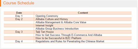 alibaba e commerce case study alibaba dream trip mba business case study tickets tue