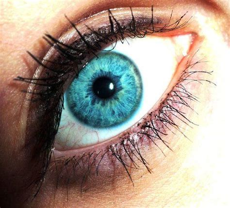 aqua eye color aqua eye colors