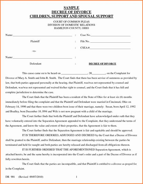 Virginia Separation Agreement Template New Divorce Decree Sle Sales Report Template In House Separation Agreement Template