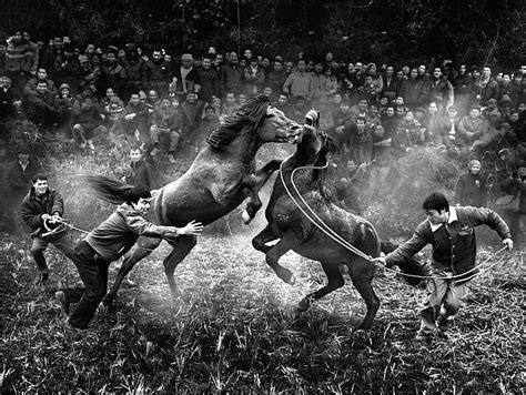 best world photo don t miss 20 best pix from world s best photography