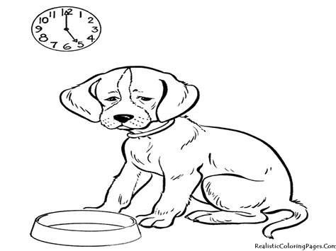 baby animal coloring pages realistic coloring pages realistic animals coloring pages only coloring pages
