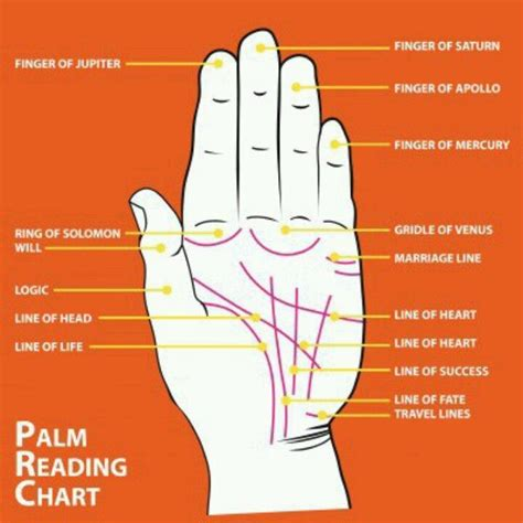 palm reading diagram 135 best meta spirit images on spirituality