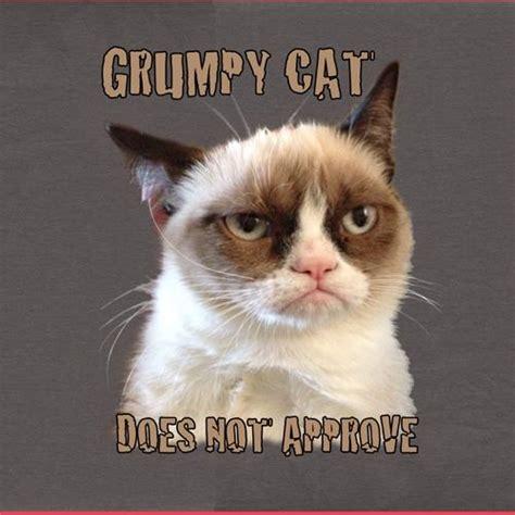Tard The Grumpy Cat Meme - the instant cat meme grumpy cat mental floss