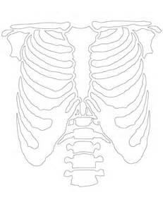 skeleton template skeleton template
