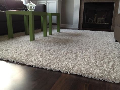 Large Living Room Area Rugs by Classic Living Room With Large White Shag Area Rugs And Brown Wooden Floors Rugs