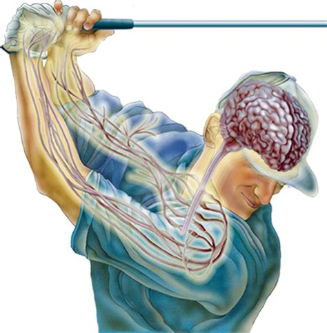 psychology of swinging thought free golf thought free golf
