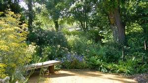 how to design your own wildlife garden bugs birds and beasts in the east our work the