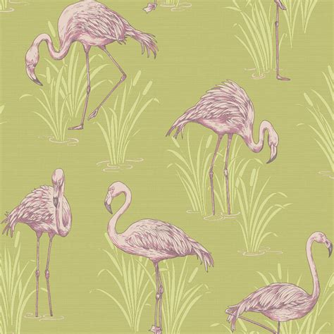 flamingo wallpaper ebay lagoon vintage flamingo feature wallpaper green pink