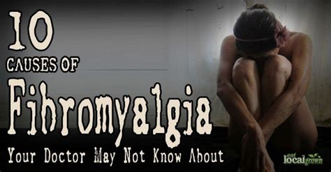 fibromyalgia a practitioner s guide to treatment 161 best images about autoimmune disorders on