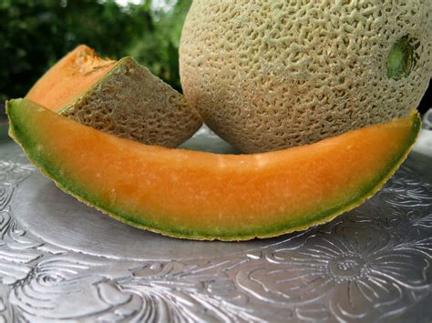 can my cantaloupe ripe cantaloupe in the summertime beyondgumbo