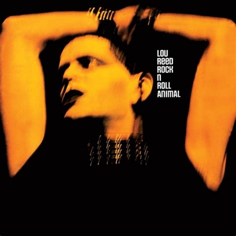lou reed best album lou reed s essential albums rolling