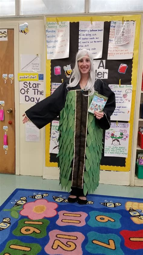 magic tree house le fay lefay costume from the magic tree house series