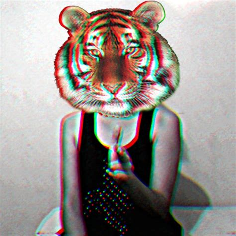 imagenes hipster tumblr hipster tiger on tumblr