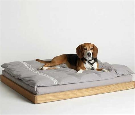 dog bed ideas dog ideas driverlayer search engine