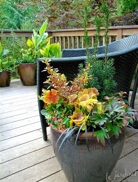 container gardening seattle containers fall winter