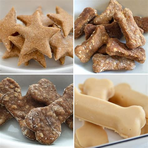 healthy snacks for dogs food i want to make for my 10 healthy treats pet projects
