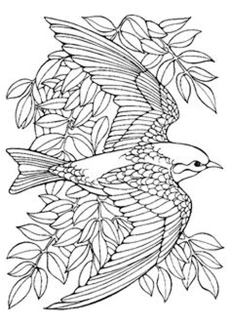 wisconsin flower coloring page free printable coloring page wisconsin state bird and