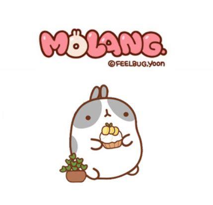 Lu Led Arashi molang plushies