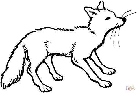 swift fox coloring page vixen coloring page free printable coloring pages