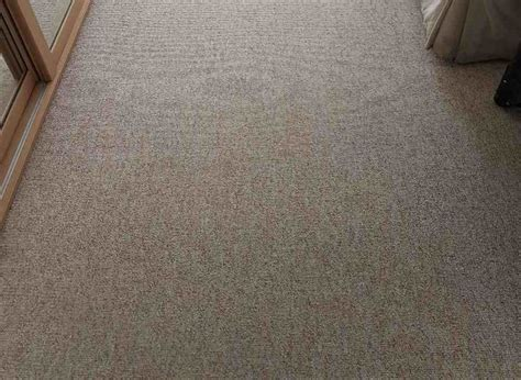 carpet and upholstery shooer office cleaning harrow ha2