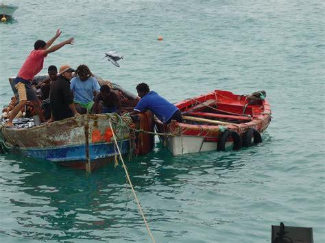 pesci volanti pesci volanti viaggi vacanze e turismo turisti per caso