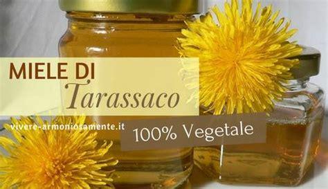 ricette con fiori di tarassaco miele di tarassaco ricetta dell alternativa vegan al miele