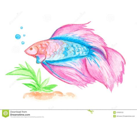 watercolor pink fish stock illustration image of
