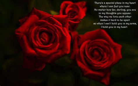 images of love roses red roses and love quote wallpaper 114549