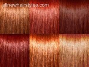auburn hair color chart tags auburn hair color chart hair color hair colour chart