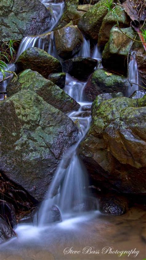 buderim forest waterfall
