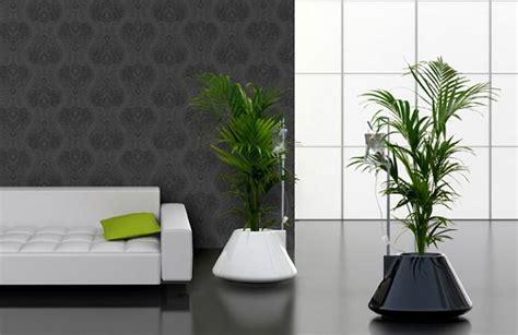 plantas para casas plantas para