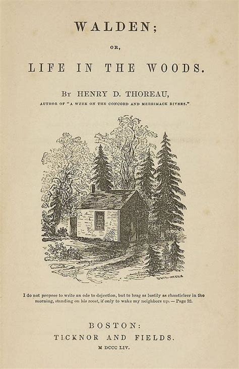 walden original book cover thoreau henry david walden or in the woods