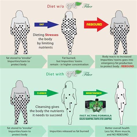 Mengurangi Perut Buncit cara mengurangi perut buncit lemak di perut
