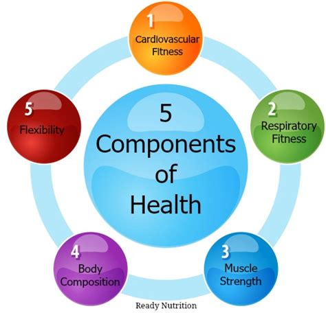 five components determine how healthy you are ready