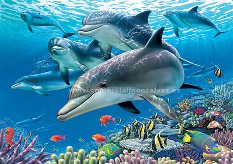 imagenes de la vida bajo el mar puzzles 1500 piezas