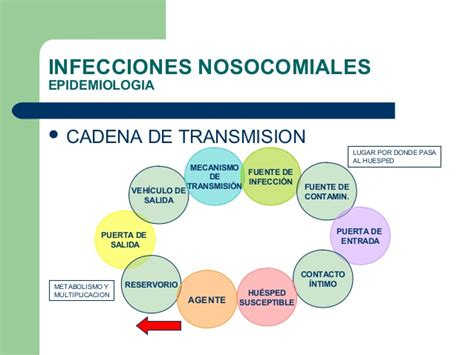 cadena epidemiologica vias de transmision infecciones nosocomiales