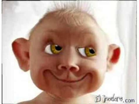 fotos muy graciosas de bebes ni 241 o feo youtube